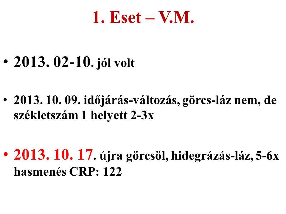 1. Eset – V.M. 2013. 02-10. jól volt 2013. 10. 09. időjárás-változás, görcs-láz nem, de székletszám 1 helyett 2-3x 2013. 10. 17. újra görcsöl, hidegrá