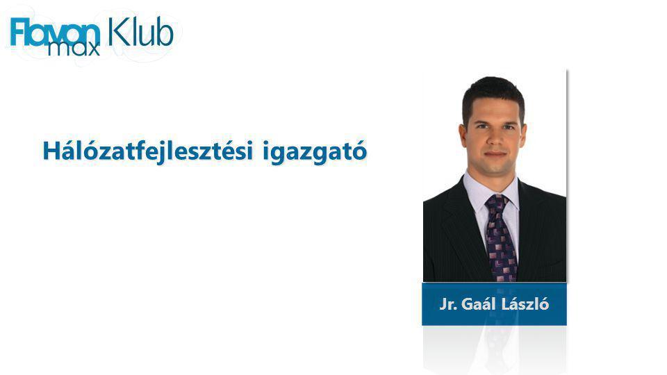Jr. Gaál László Hálózatfejlesztési igazgató