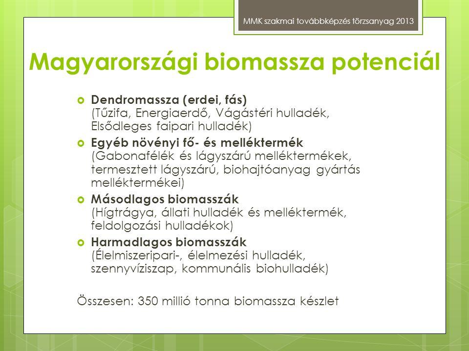 Magyarországi biomassza potenciál MMK szakmai továbbképzés törzsanyag 2013  Dendromassza (erdei, fás) (Tűzifa, Energiaerdő, Vágástéri hulladék, Elsőd