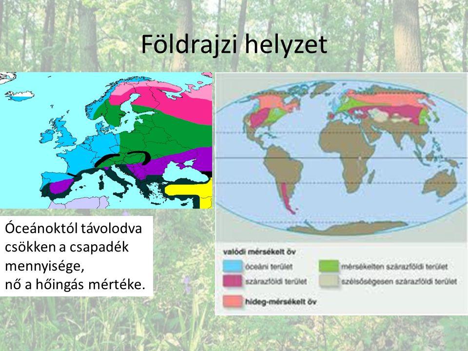 Mérsékelt öv növényzetét befolyásoló tényezők Az óceáni és nedves kontinentális területeken a hőmérséklet és a csapadék viszonya elegendő az erdő kialakulásához.