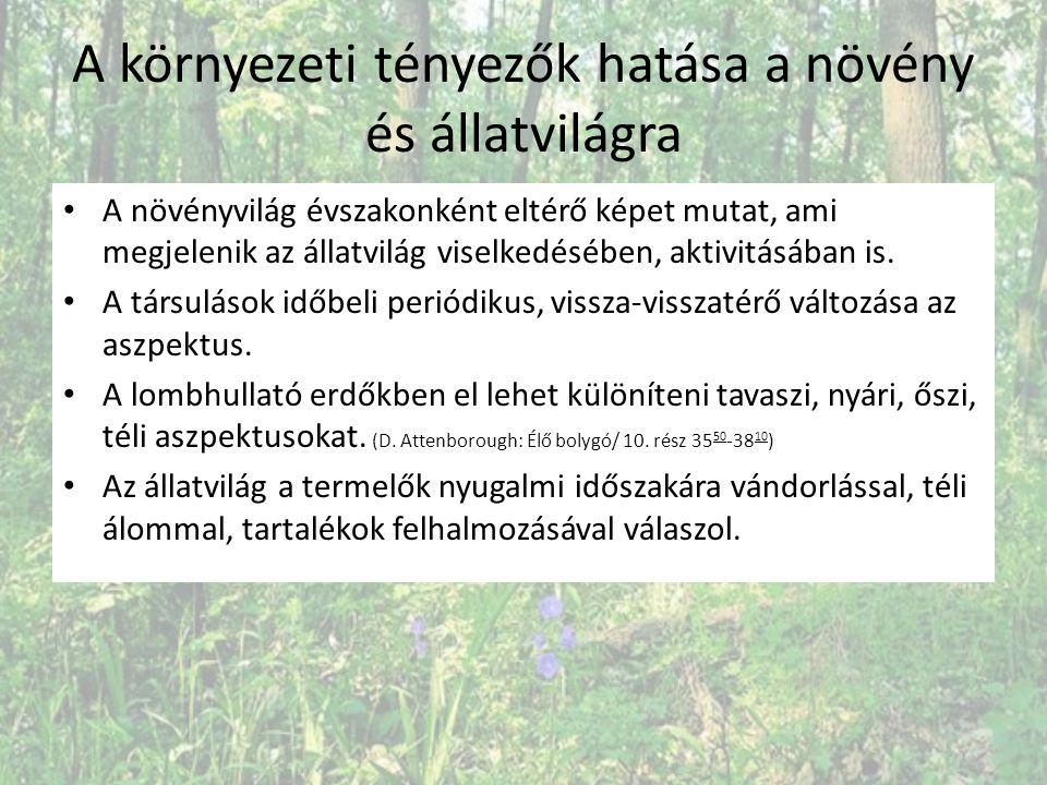Lomhullató erdők termelő szintenként: lombkoronaszint BükkCsertölgy Gyertyán Kocsányos tölgy Magas kőris Kocsánytalan tölgy
