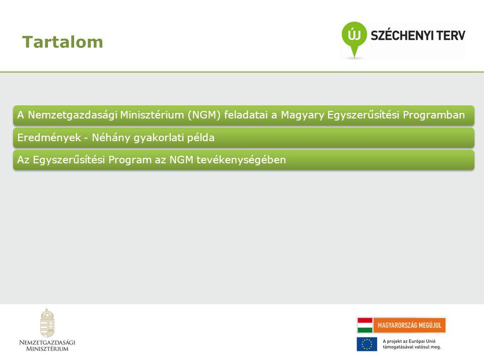 Az NGM részvétele az Egyszerűsítési Programban Adózás (20 intézkedés) Munkavállalás, munkanélküli ellátás (10 intézkedés) Ingatlannal kapcsolatos ügyek (4 intézkedés) Család, gyermek (2 intézkedés) Közoktatás, felsőoktatás (2 intézkedés) Okmányok, hatósági igazolások (1 intézkedés) Egészség- biztosítási ellátások (1 intézkedés) Halálozás, öröklés (1 intézkedés) NGM-vállalások 8 ügycsoportban: