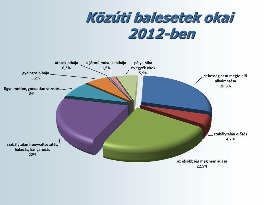 Közúti balesetek okozói 2012-ben