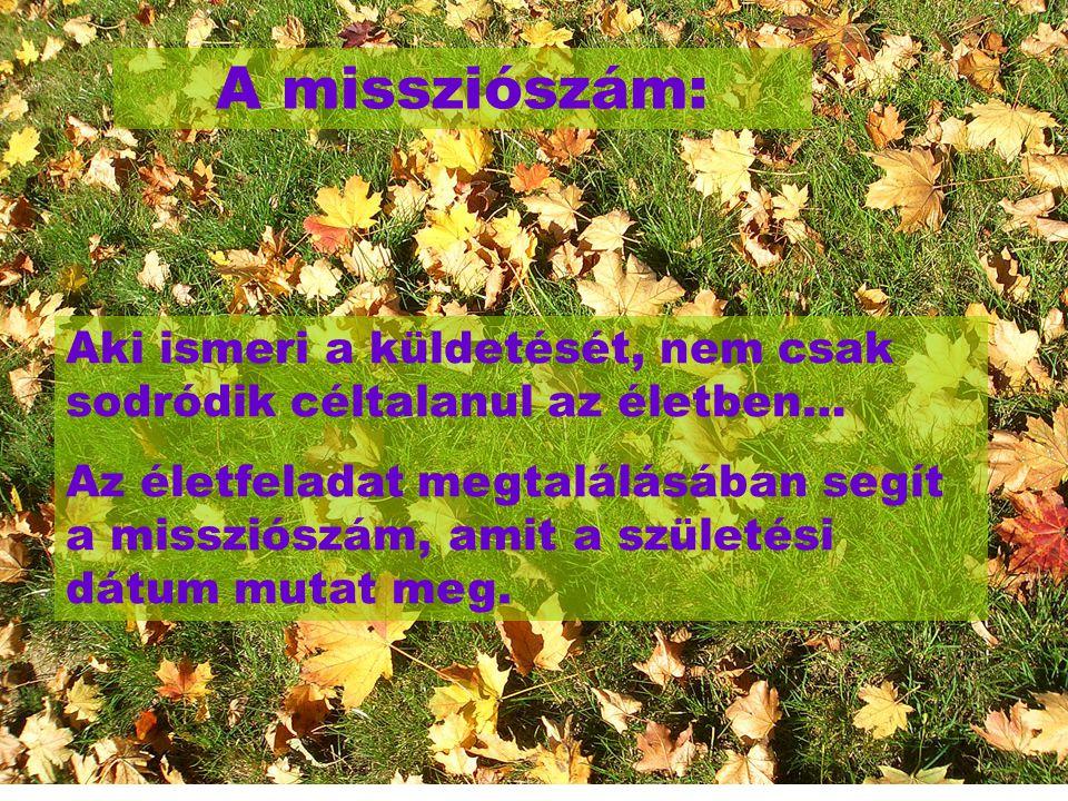 A missziószám: Aki ismeri a küldetését, nem csak sodródik céltalanul az életben… Az életfeladat megtalálásában segít a missziószám, amit a születési d