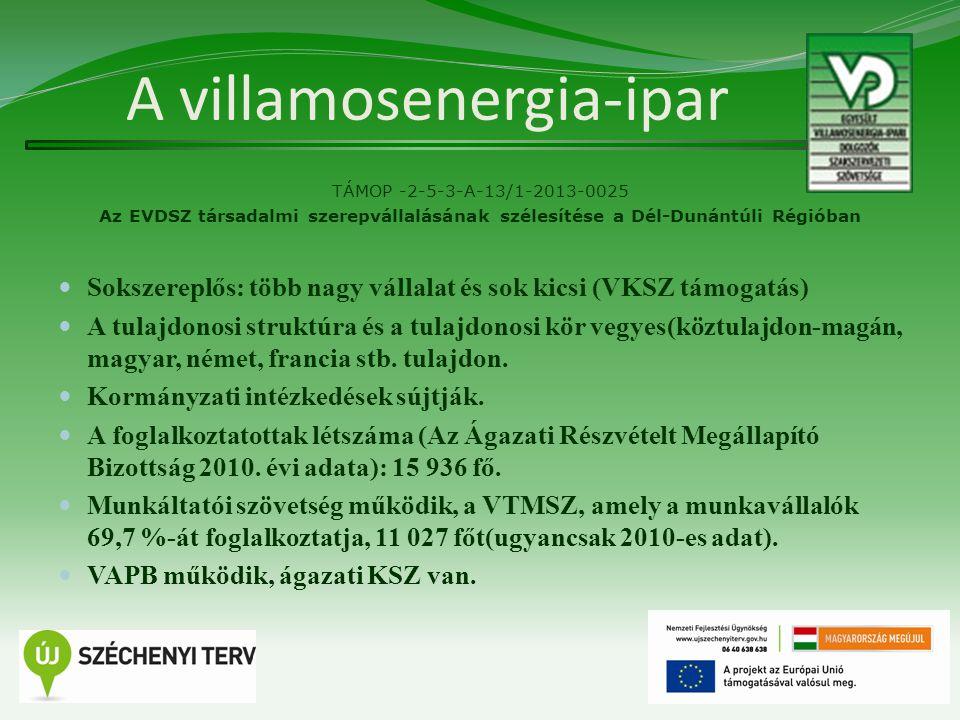 A villamosenergia-ipar TÁMOP -2-5-3-A-13/1-2013-0025 Az EVDSZ társadalmi szerepvállalásának szélesítése a Dél-Dunántúli Régióban Sokszereplős: több nagy vállalat és sok kicsi (VKSZ támogatás) A tulajdonosi struktúra és a tulajdonosi kör vegyes(köztulajdon-magán, magyar, német, francia stb.