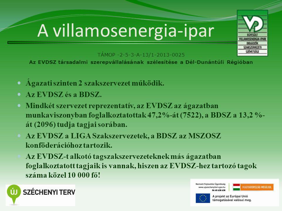 A villamosenergia-ipar TÁMOP -2-5-3-A-13/1-2013-0025 Az EVDSZ társadalmi szerepvállalásának szélesítése a Dél-Dunántúli Régióban Ágazati szinten 2 szakszervezet működik.