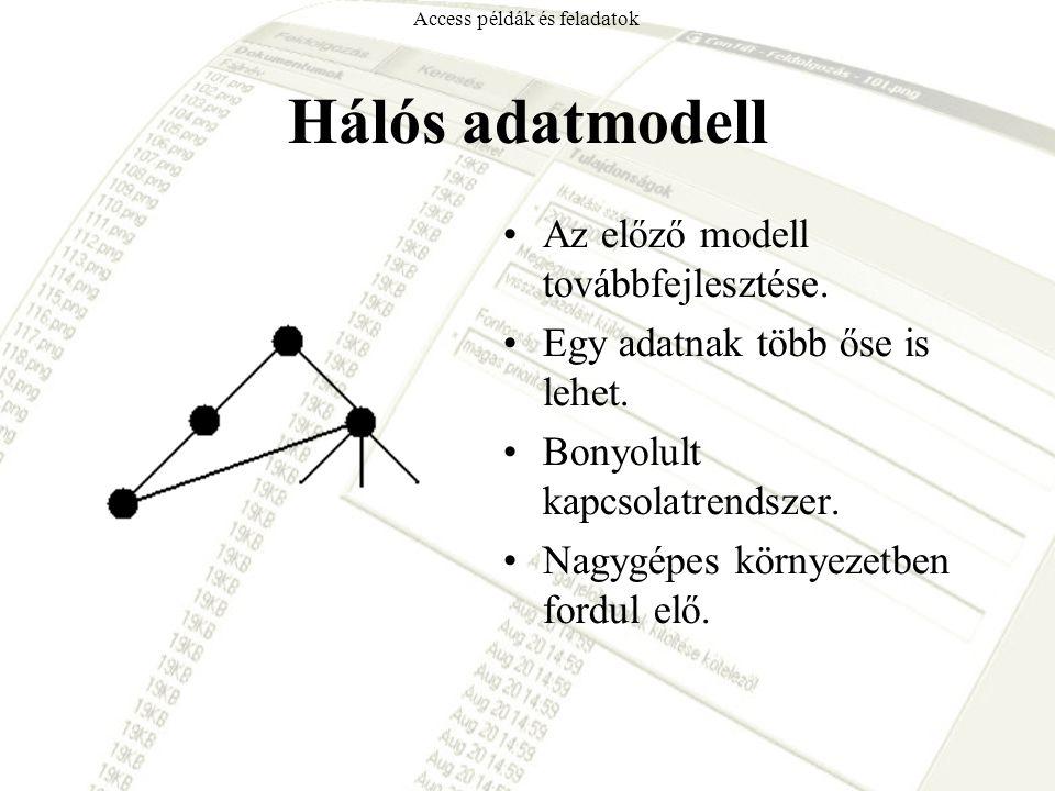 Hálós adatmodell Az előző modell továbbfejlesztése. Egy adatnak több őse is lehet. Bonyolult kapcsolatrendszer. Nagygépes környezetben fordul elő. Acc