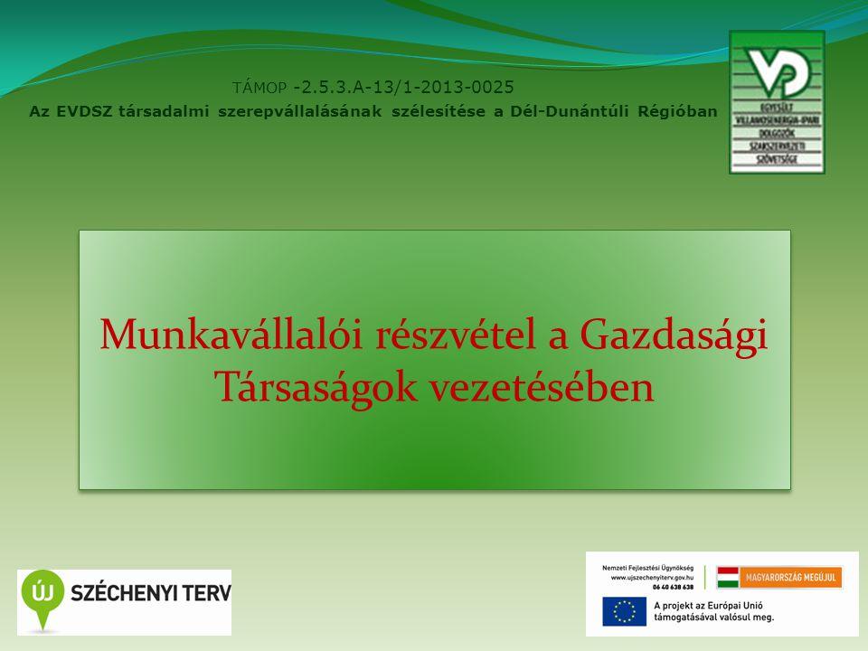 TÁMOP -2.5.3.A-13/1-2013-0025 Az EVDSZ társadalmi szerepvállalásának szélesítése a Dél-Dunántúli Régióban 2 Munkavállalói részvétel a Gazdasági Társaságok vezetésében