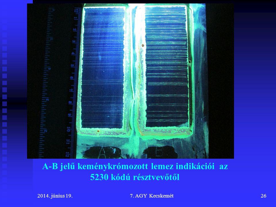 A-B jelű keménykrómozott lemez indikációi az 5230 kódú résztvevőtől 2014.