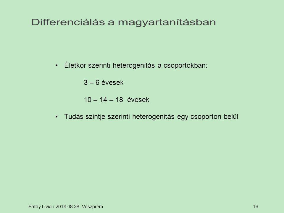 Pathy Lívia / 2014.08.28. Veszprém16 Életkor szerinti heterogenitás a csoportokban: 3 – 6 évesek 10 – 14 – 18 évesek Tudás szintje szerinti heterogeni