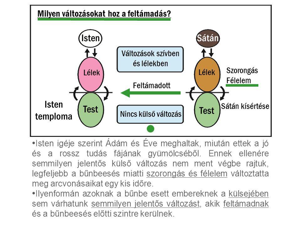 Milyen változásokat hoz a feltámadás? Isten igéje szerint Ádám és Éve meghaltak, miután ettek a jó és a rossz tudás fájának gyümölcséből. Ennek ellené
