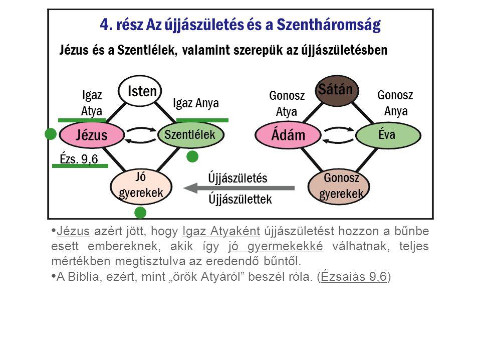 4. rész Az újjászületés és a Szentháromság Jézus és a Szentlélek, valamint szerepük az újjászületésben Jézus azért jött, hogy Igaz Atyaként újjászület