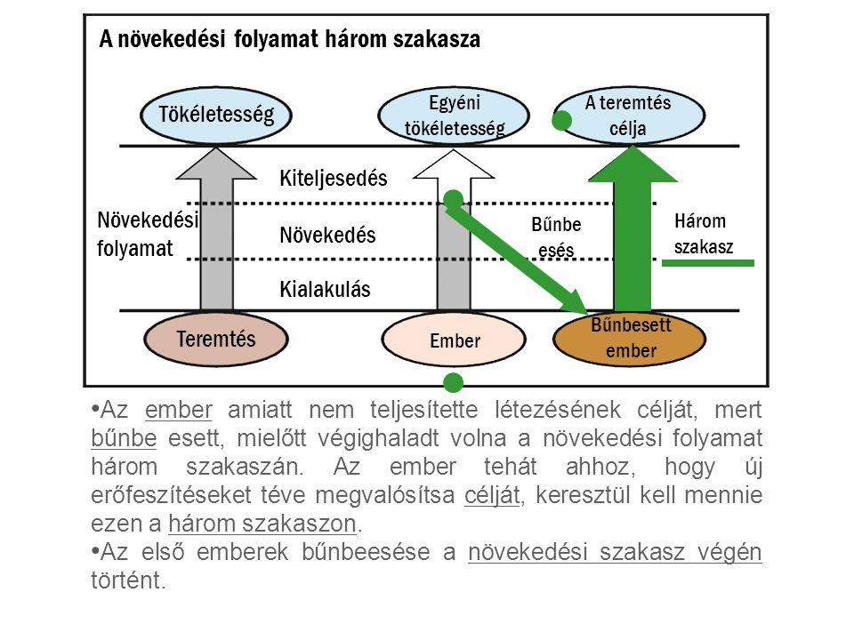 Az ember amiatt nem teljesítette létezésének célját, mert bűnbe esett, mielőtt végighaladt volna a növekedési folyamat három szakaszán.