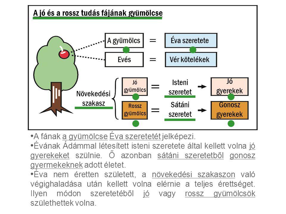 A jó és a rossz tudás fájának gyümölcse A fának a gyümölcse Éva szeretetét jelképezi. Évának Ádámmal létesített isteni szeretete által kellett volna j