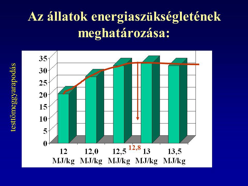 Az állatok energiasz ü kségletének meghatározása: 12,8 testtömeggyarapodás
