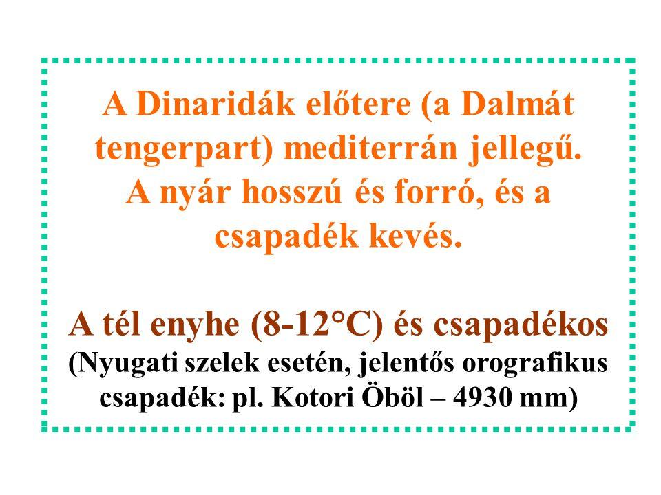 A Dinaridák előtere (a Dalmát tengerpart) mediterrán jellegű. A nyár hosszú és forró, és a csapadék kevés. A tél enyhe (8-12°C) és csapadékos (Nyugati