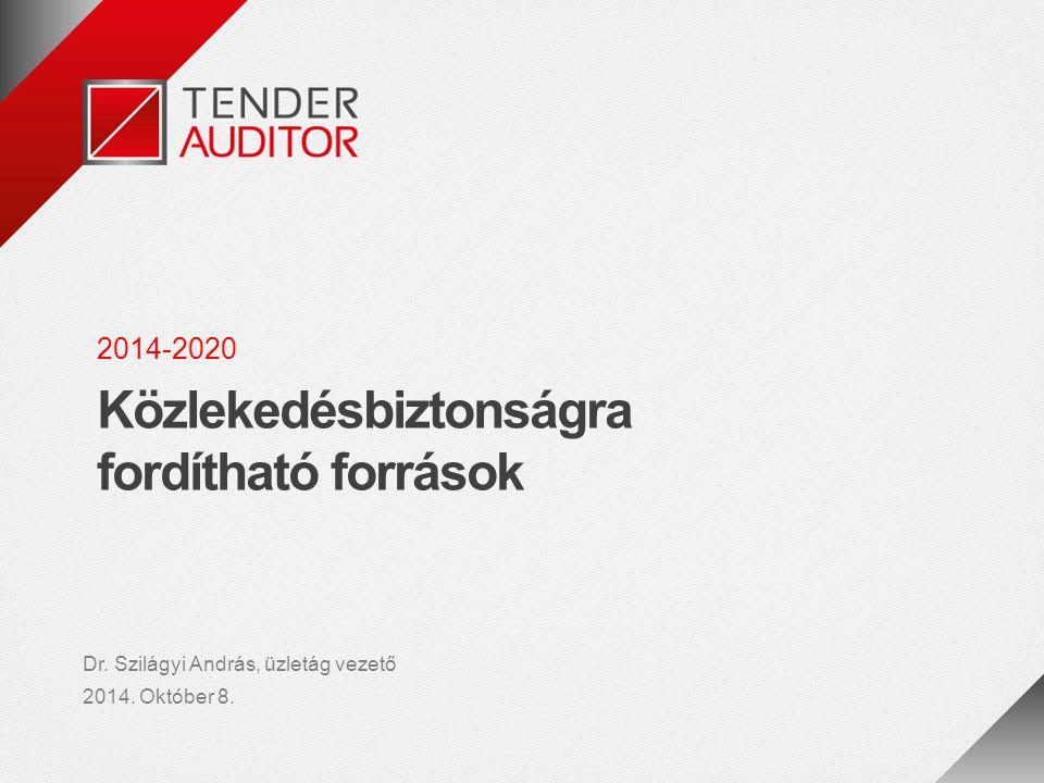 12 / 13 A Tenderauditor Kft.