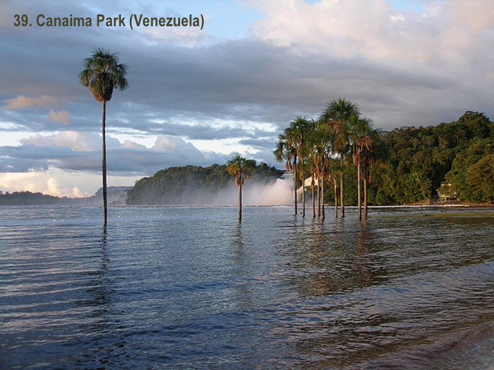 38. Roraima Hegység (Venezuela)