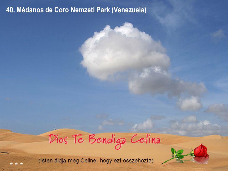 39. Canaima Park (Venezuela)