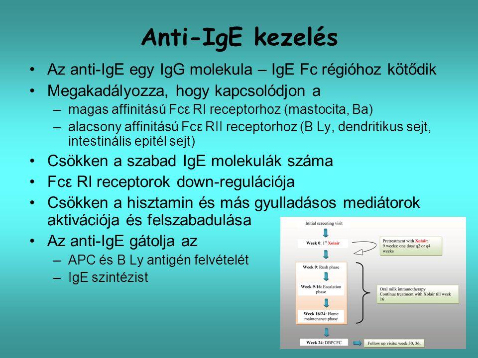Anti-IgE kezelés Az anti-IgE egy IgG molekula – IgE Fc régióhoz kötődik Megakadályozza, hogy kapcsolódjon a –magas affinitású Fcε RI receptorhoz (mast