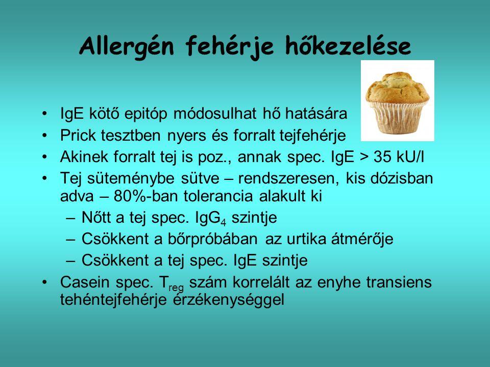 Allergén fehérje hőkezelése IgE kötő epitóp módosulhat hő hatására Prick tesztben nyers és forralt tejfehérje Akinek forralt tej is poz., annak spec.