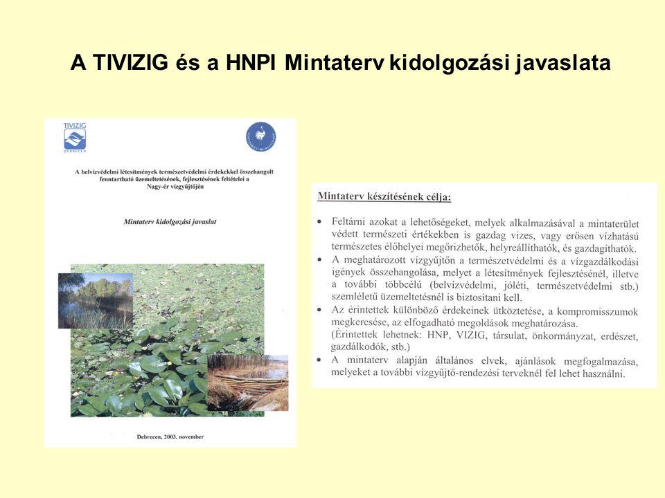 A TIVIZIG és a HNPI Mintaterv kidolgozási javaslata
