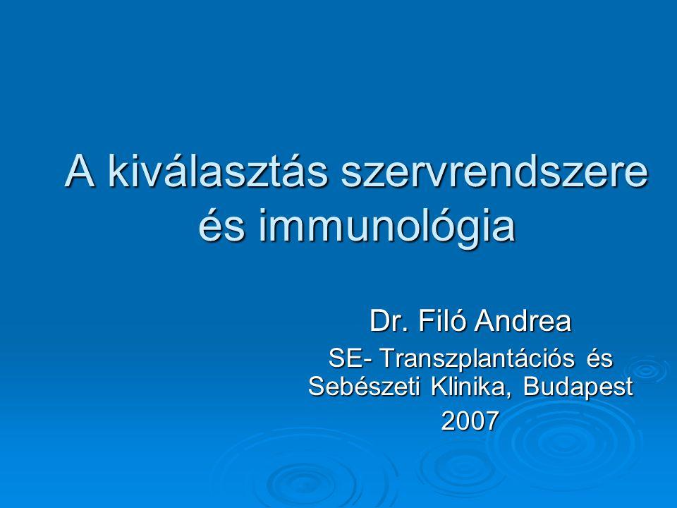 A kiválasztás szervrendszere és immunológia Dr. Filó Andrea SE- Transzplantációs és Sebészeti Klinika, Budapest 2007