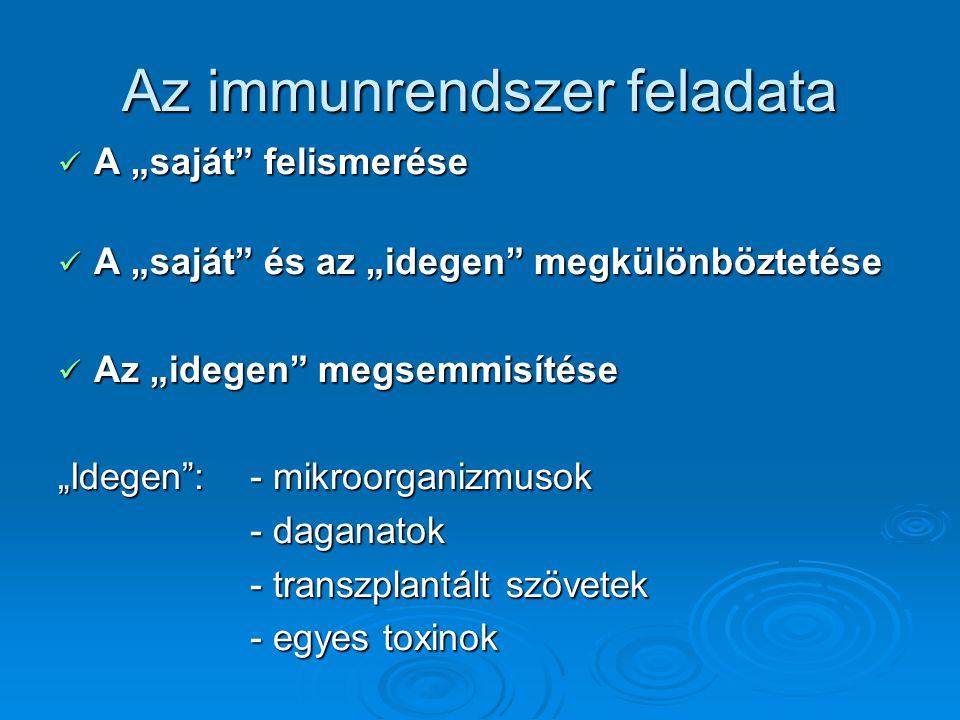 Az immunrendszer solubilis alkotóelemei Cytokinek Cytokinek A T-sejtek és a monocyták termelik Csoportjai: Interleukinek (láz, gyulladás, lymphocyta aktiváció, stb.) Interleukinek (láz, gyulladás, lymphocyta aktiváció, stb.) Tumornecrosis faktor (cytotoxikus és cytostatikus hatás) Tumornecrosis faktor (cytotoxikus és cytostatikus hatás) Coloniaképző faktorok (granulocyta növekedés) Coloniaképző faktorok (granulocyta növekedés) Átalakulást serkentő faktor Átalakulást serkentő faktor Chemokinek (chemotaxis fokozása) Chemokinek (chemotaxis fokozása)