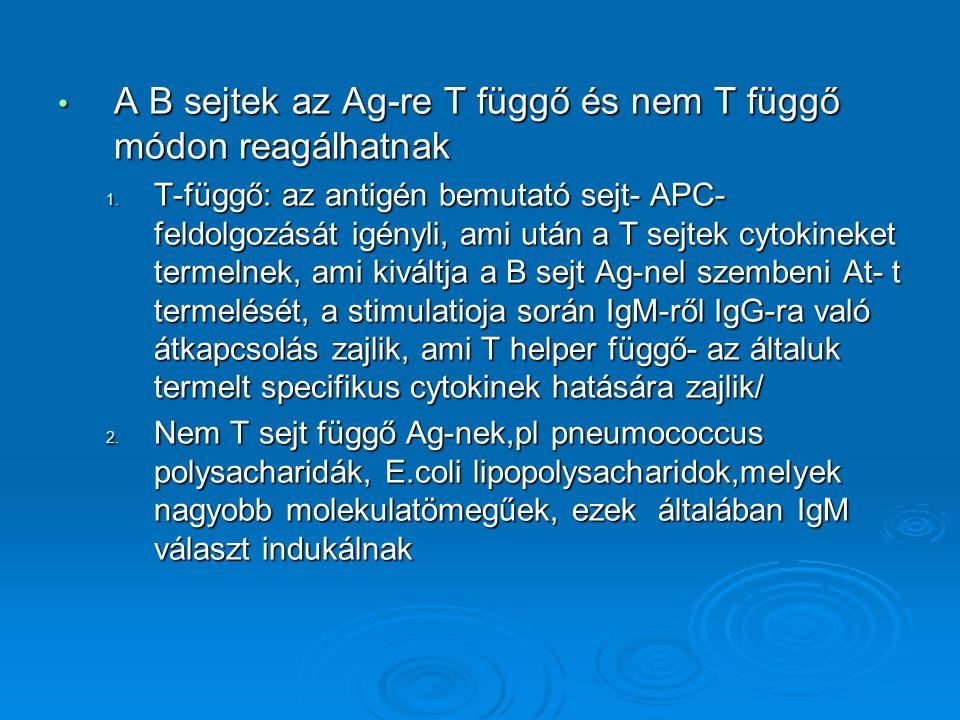 A B sejtek az Ag-re T függő és nem T függő módon reagálhatnak A B sejtek az Ag-re T függő és nem T függő módon reagálhatnak 1. T-függő: az antigén bem