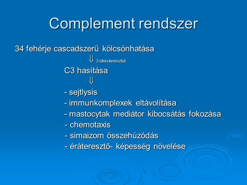 Complement rendszer 34 fehérje cascadszerű kölcsönhatása  3 úton keresztül C3 hasítása  - sejtlysis - immunkomplexek eltávolítása - mastocytak mediá