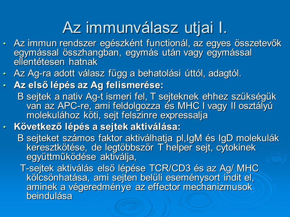 Az immunválasz utjai I. Az immun rendszer egészként functionál, az egyes összetevők egymással összhangban, egymás után vagy egymással ellentétesen hat