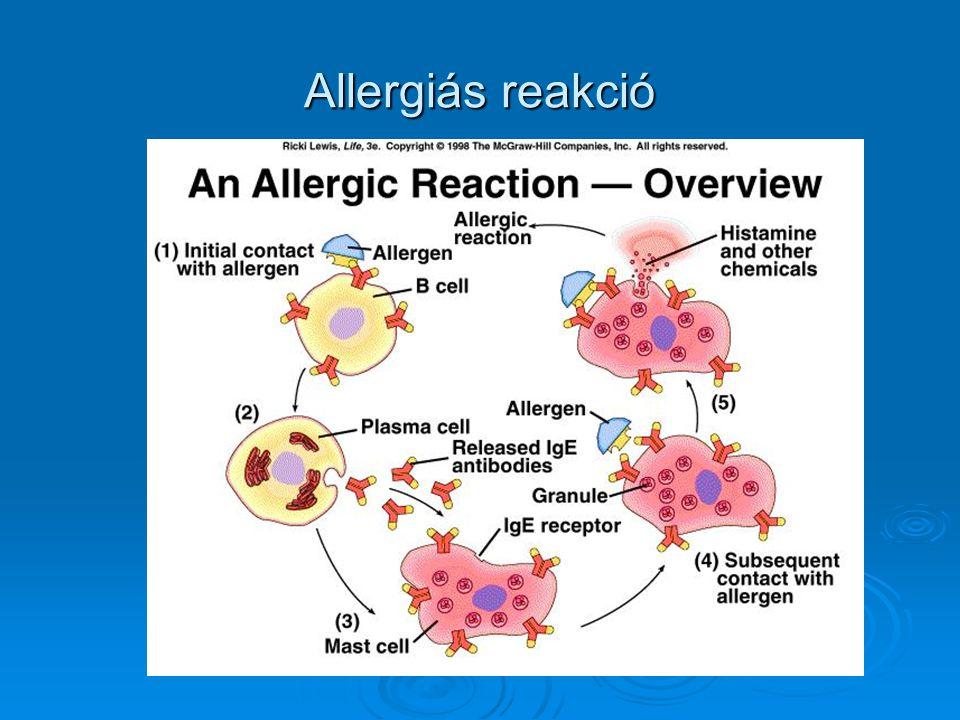 Allergiás reakció