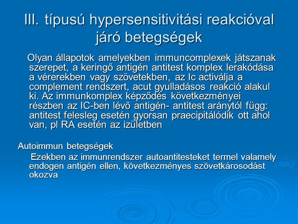 III. típusú hypersensitivitási reakcióval járó betegségek Olyan állapotok amelyekben immuncomplexek játszanak szerepet, a keringő antigén antitest kom