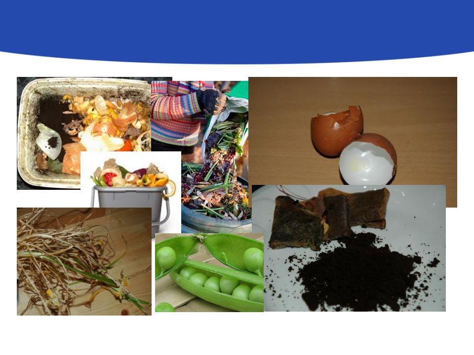 Kerti hulladékok: Levágott fű, sövénynyírásból származó ágak, levelek, kerti gyomok (virágzás előtt), lomb, aprított gallyak, lehullott gyümölcs, faforgács, fűrészpor, szalma, elszáradt (nem beteg) növények Egyéb komposztálható anyagok: növényevő kisállatok ürüléke, kartonpapír (mértékkel) fahamu: max.