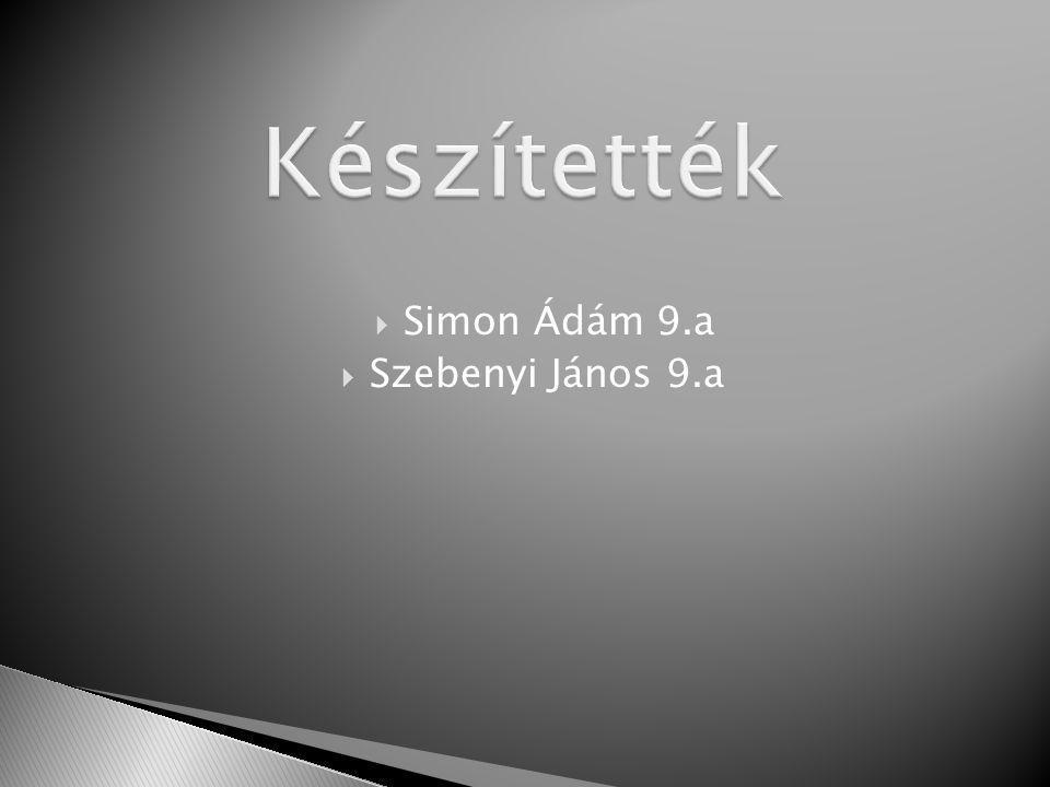  Simon Ádám 9.a  Szebenyi János 9.a