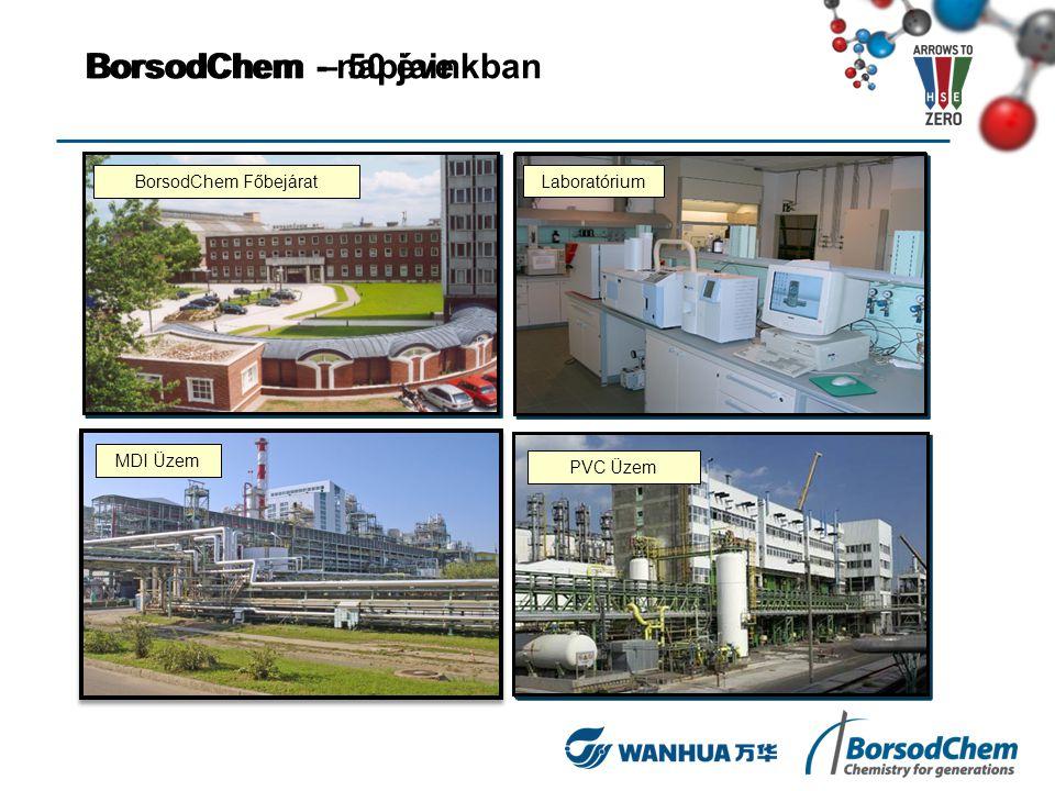 BorsodChem – 50 éveBorsodChem - napjainkban BVK Főbejárat Laboratórium Műtrágya gyár PVC Üzem építése BorsodChem Főbejárat Laboratórium PVC Üzem MDI Ü