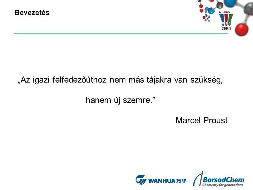 """""""Az igazi felfedezőúthoz nem más tájakra van szükség, hanem új szemre."""" Marcel Proust Bevezetés"""