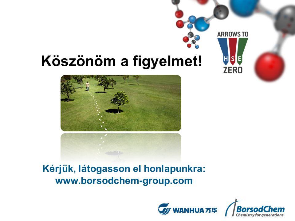 Köszönöm a figyelmet! Kérjük, látogasson el honlapunkra: www.borsodchem-group.com