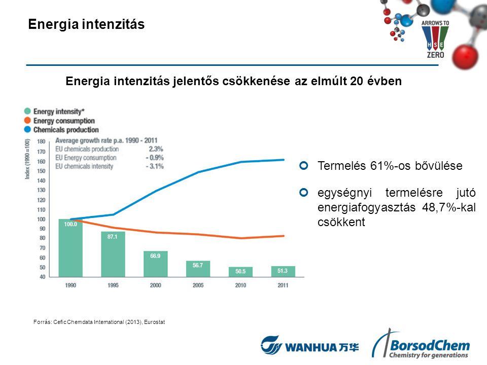 Üvegházhatású gáz kibocsátás csökkenése: 43 %-os ÜHG kibocsátás csökkenés egységnyi energiafelhasználásra 71 %-os ÜHG kibocsátás csökkenés egységnyi termelésre Üvegházhatású gáz (ÜHG) alakulása egységnyi energiafelhasználásra és egységnyi termelésre Forrás: Cefic Chemdata International (2013), Eurostat, Europen Envorenment Agency (EEA) Üvegházhatású gázok alakulása