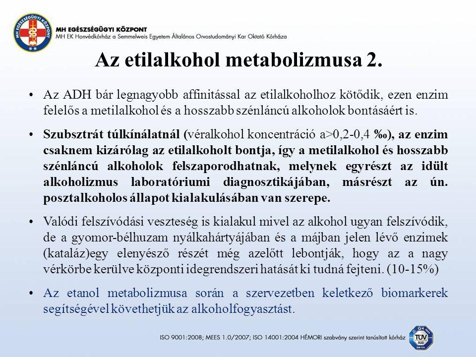 Az etilalkohol metabolizmusa 2.