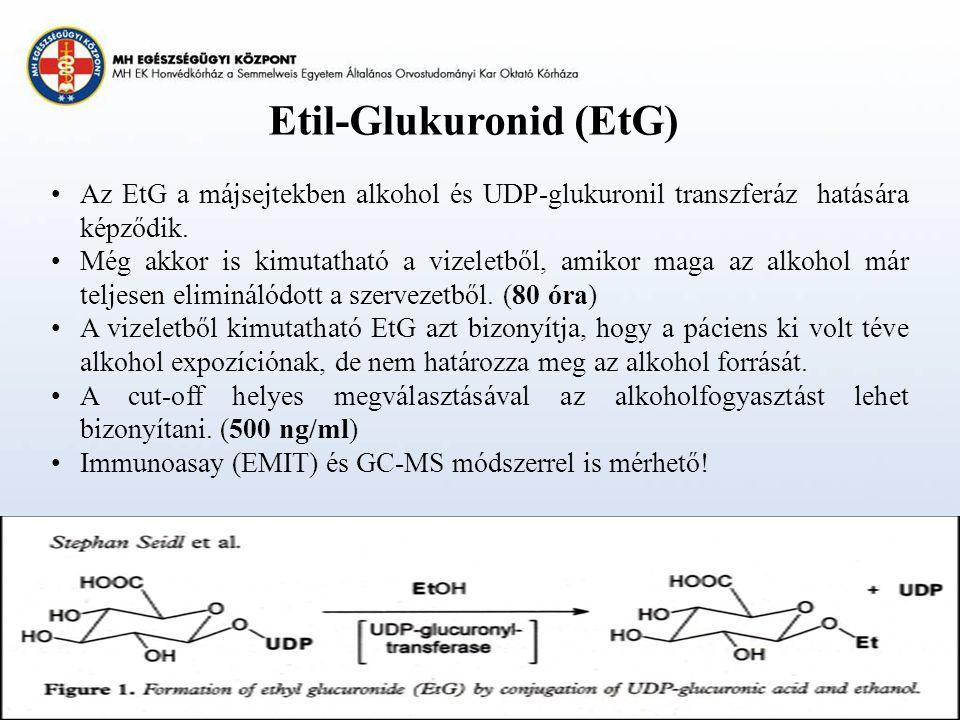 Etil-Glukuronid (EtG) Az EtG a májsejtekben alkohol és UDP-glukuronil transzferáz hatására képződik.
