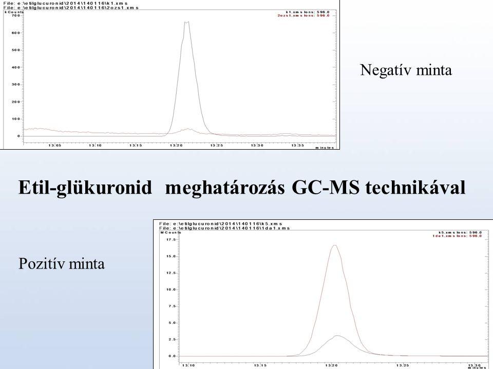 Etil-glükuronid meghatározás GC-MS technikával Negatív minta Pozitív minta