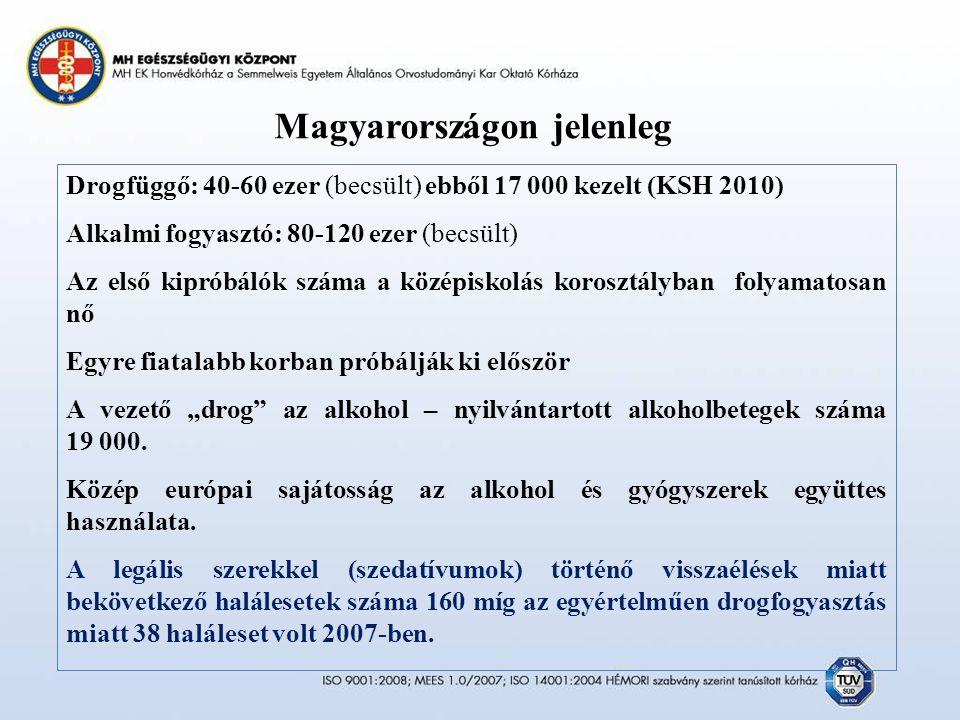 """Magyarországon jelenleg Drogfüggő: 40-60 ezer (becsült) ebből 17 000 kezelt (KSH 2010) Alkalmi fogyasztó: 80-120 ezer (becsült) Az első kipróbálók száma a középiskolás korosztályban folyamatosan nő Egyre fiatalabb korban próbálják ki először A vezető """"drog az alkohol – nyilvántartott alkoholbetegek száma 19 000."""