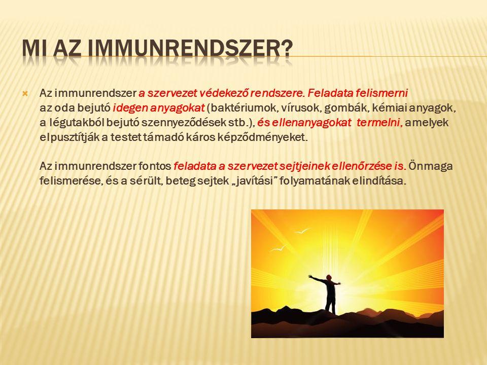  Az immunrendszer a szervezet védekező rendszere.