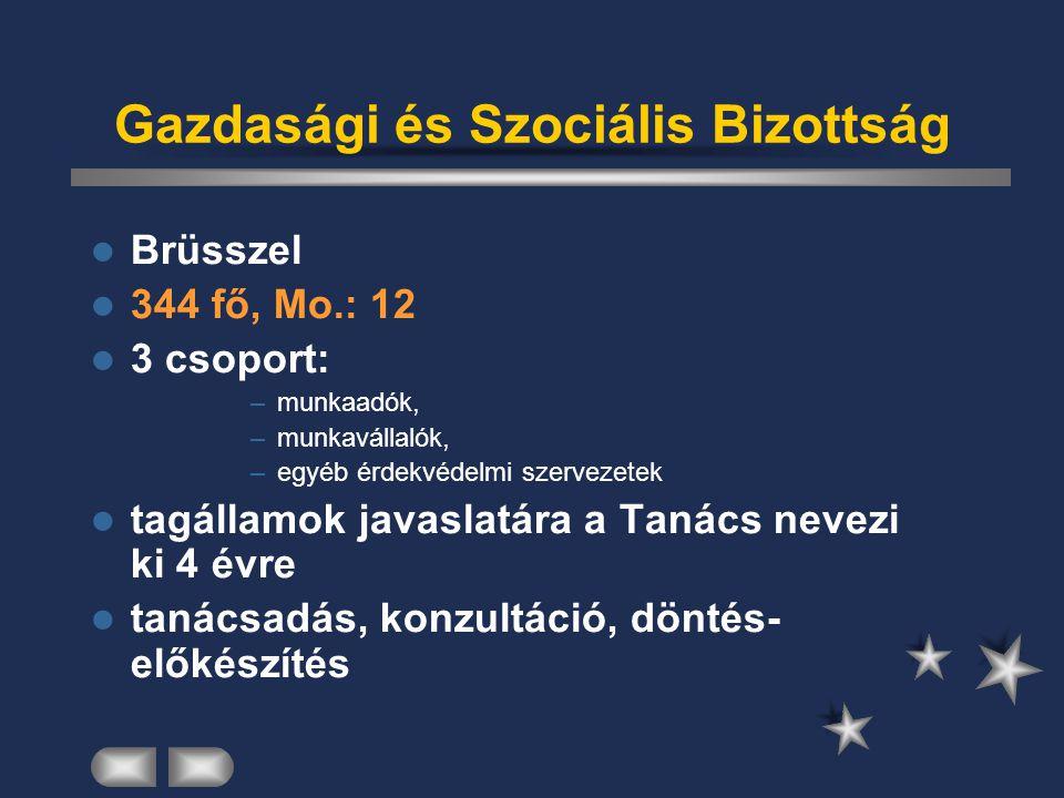 Gazdasági és Szociális Bizottság Brüsszel 344 fő, Mo.: 12 3 csoport: –munkaadók, –munkavállalók, –egyéb érdekvédelmi szervezetek tagállamok javaslatár