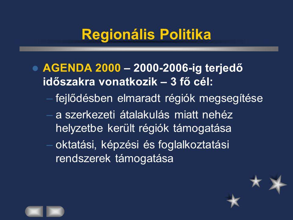 Regionális Politika AGENDA 2000 – 2000-2006-ig terjedő időszakra vonatkozik – 3 fő cél: –fejlődésben elmaradt régiók megsegítése –a szerkezeti átalaku