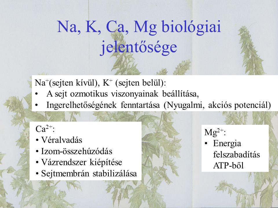 Na, K, Ca, Mg biológiai jelentősége Na + (sejten kívül), K + (sejten belül): A sejt ozmotikus viszonyainak beállítása, Ingerelhetőségének fenntartása (Nyugalmi, akciós potenciál) Ca 2+ : Véralvadás Izom-összehúzódás Vázrendszer kiépítése Sejtmembrán stabilizálása Mg 2+ : Energia felszabadítás ATP-ből