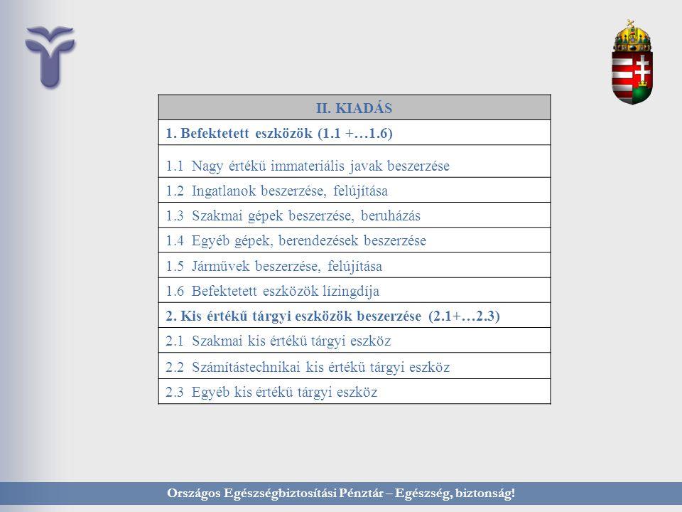 Országos Egészségbiztosítási Pénztár – Egészség, biztonság! II. KIADÁS 1. Befektetett eszközök (1.1 +…1.6) 1.1 Nagy értékű immateriális javak beszerzé