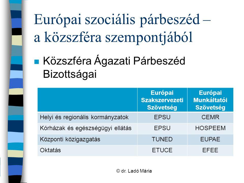 """Európai szociális párbeszéd – lehetőségek és dilemmák n Munkaügyi kapcsolatok szakma hiányosságai n Európai szociális párbeszédben résztvevők, azzal foglalkozók munkaerőpiaca nem alakult ki –""""nemzetközisek plusz feladata –szakértelem vs érdekképviselet © dr."""