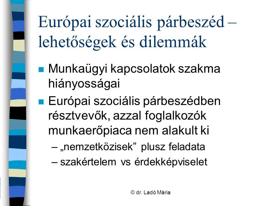 Európai szociális párbeszéd – lehetőségek és dilemmák n Képviseleti demokrácia létezésének, működésének a próbája n Nemzetközi munka normái még gyakran sérülnek –szakmai felkészültség, előzetes egyeztetés, koordináció –magyar problémák nemzetközi porondokon © dr.